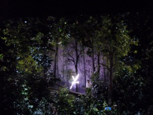 Parsifal in Woods
