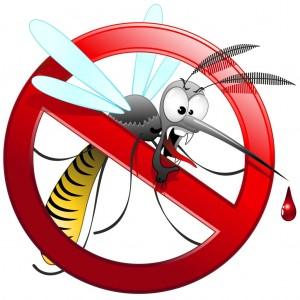 zanzare-rimedi-1024x1024